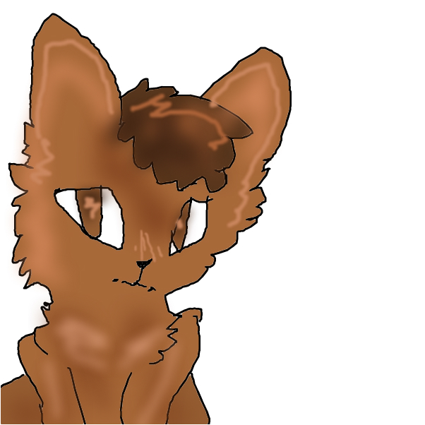 Chocolate cat ;3