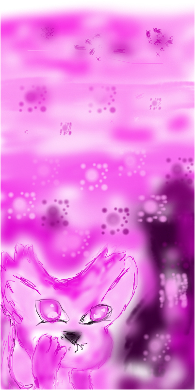 Розовый котик