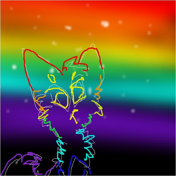Rainbows cat