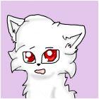 I, lady meow