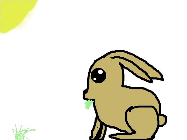 кролик<3