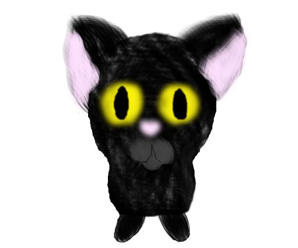 Cat XD