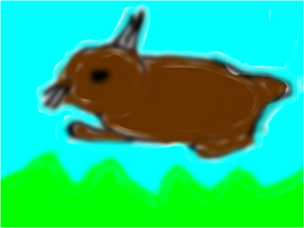 THE CUTE BUNNY THAT LIVES IN THE FOREST!