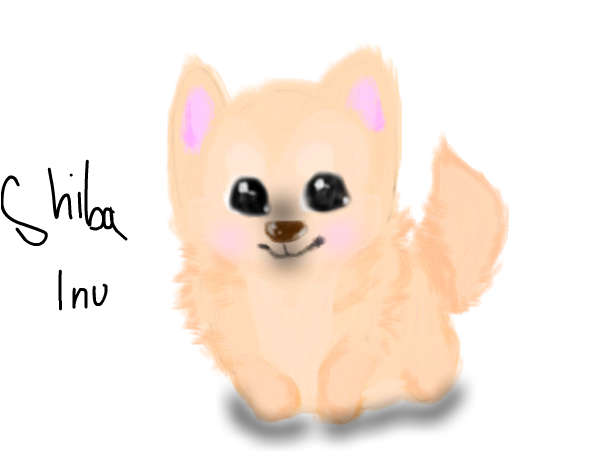 just a cute shiba inu