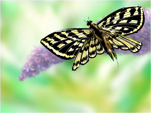 Liliac and butterfly