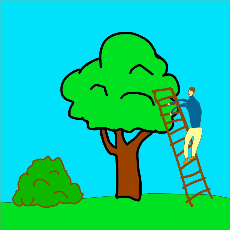 кто-то полез на дерево.