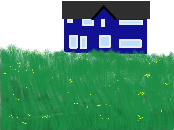 shahiro the blue house on a hill