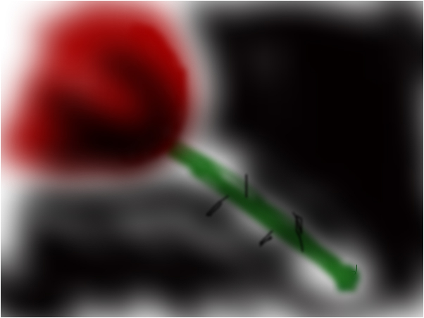 crisp rose