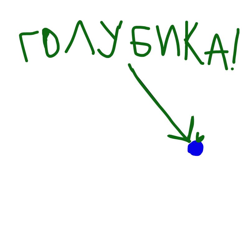 Голубика В ПУСТОТЕ