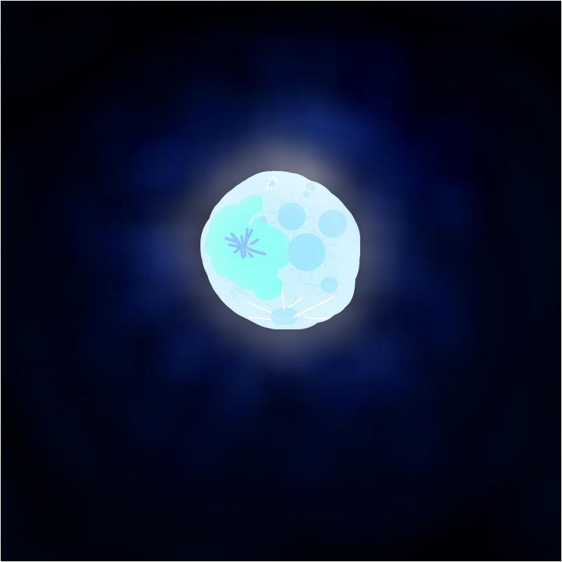 Best  Moon