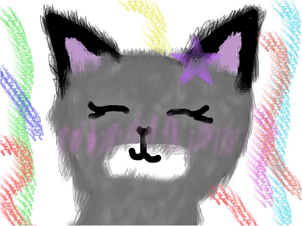 Cute Cat :D