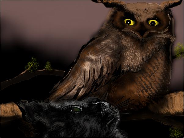 Elena  the Owl - Cat