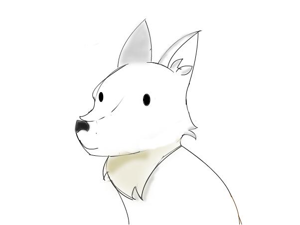 idk? fox