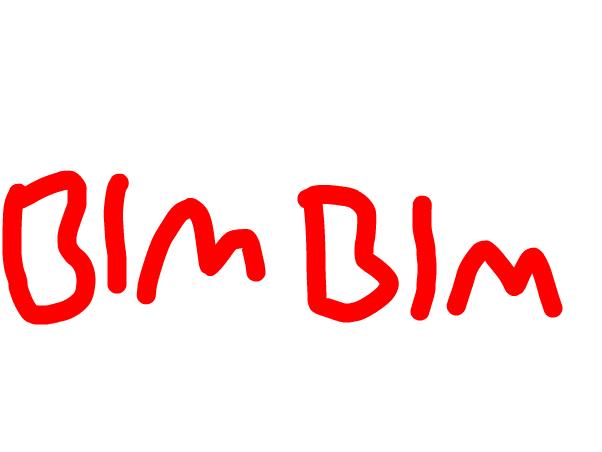 BIM BIM
