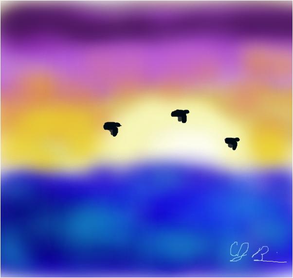 a sea sunset