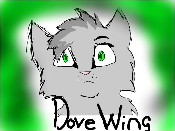 DoveWing(DovePaw)