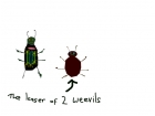 lesser of 2 weevils