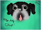 My Shih Tzu, Chip