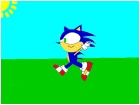 Sonic Running Though a Field