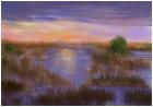 Sunset On The Bog