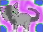 warrior cat drawing contest