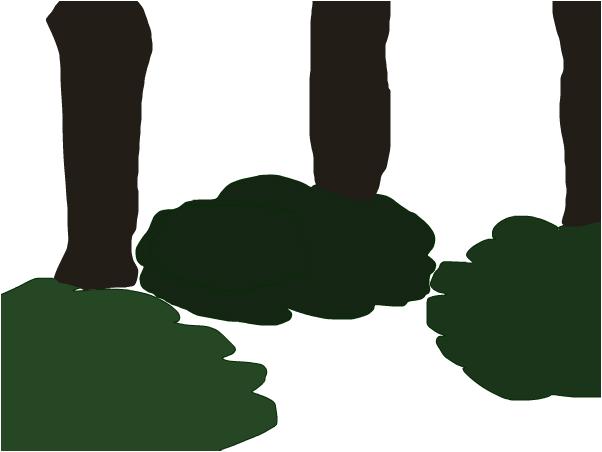 Upside Down Trees