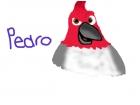Pedro from Rio