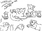 Warrior cats sketch