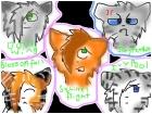 my top 5 fav warrior cats!