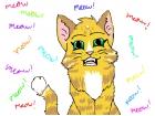 Meow cat!!