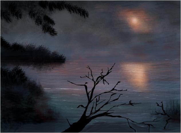 Moon Shining on Loon Lake