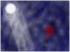 Rose Beneath the moon