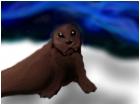 Seal Under a Blue Aurora Borealis*