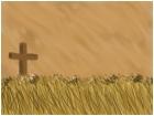 cross in the weat field