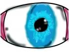 an eyeball