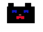 Mind craft black cat