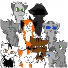 my fav warrior cats