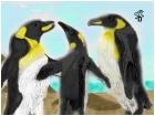 Three Penguins on a Beach