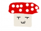 wierd mushroom
